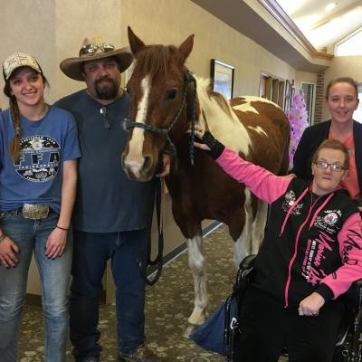 Greenfield Hospice horse visit